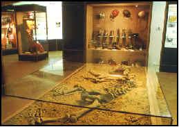 Courniou le musée spéleologie archéologie